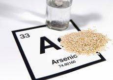 2015 02 03 Arsenic and Rice