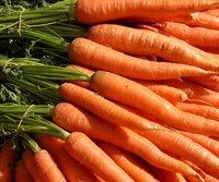 2013 07 02 Carrots